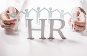 HR-Ann-Hogan-Consulting-Human-Resources-Consultant-Denver-ColoradoV1